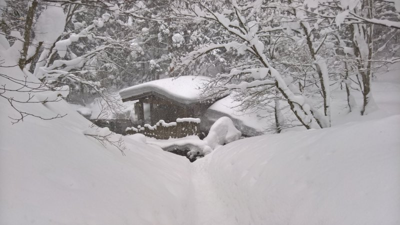 Der gemischte Badebereich von Ganiba Onsen befindet sich mitten in der Natur.