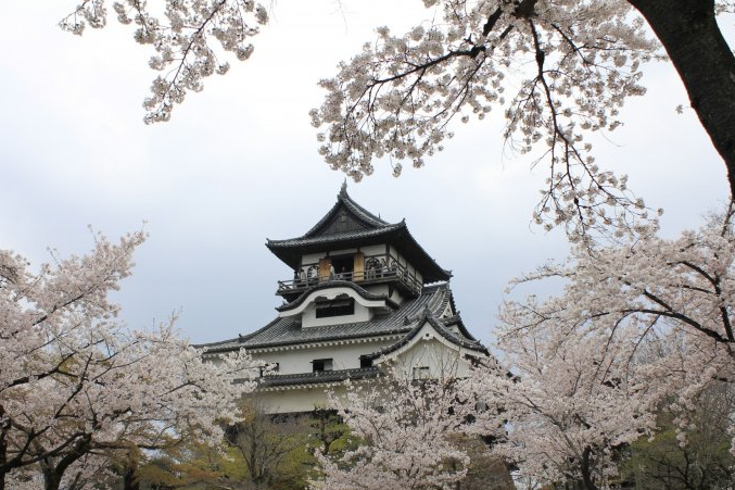 Burg Inuyama in der Präfektur Aichi.