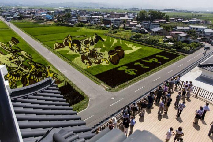 Reisfeldkunst in Inakadate in der Präfektur Aomori.