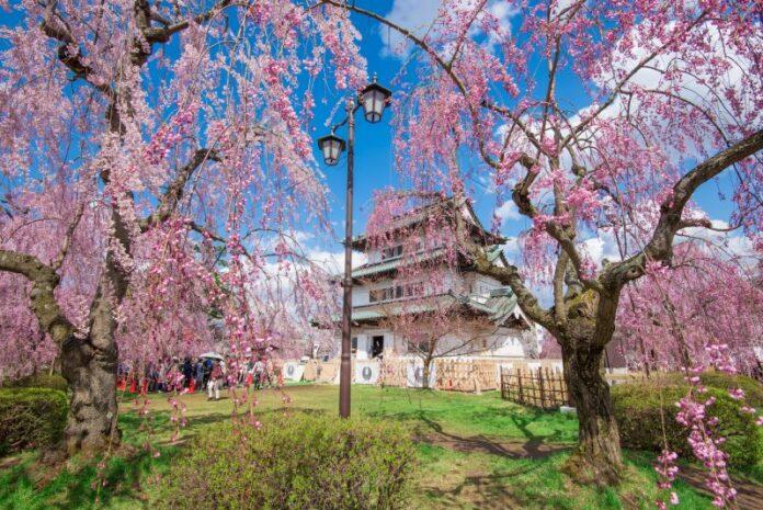 Burg Hirosaki in Aomori.