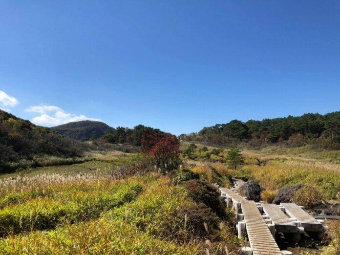 Vielseitige Landschaft beim Wandern im Kuju Gebirge.