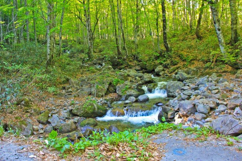 Nyuto Onsen liegt inmitten von Natur und Bergen.