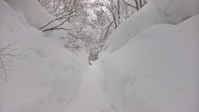 Wer im Winter den Outdoor- Badebereich von Ganiba Onsen erreichen will, muss eine kurze Schneewanderung in Kauf nehmen.