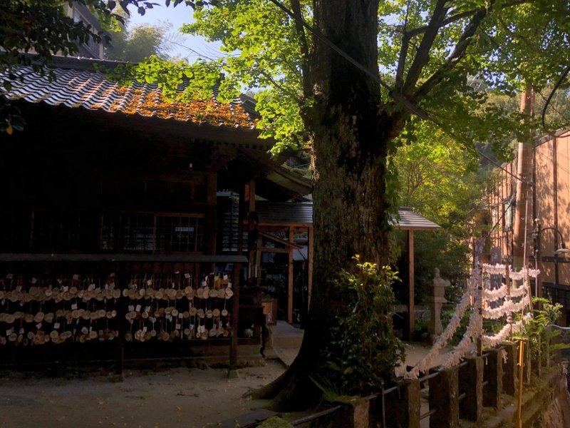 Ein kleiner Schrein im Zentrum von Kurokawa Onsen.