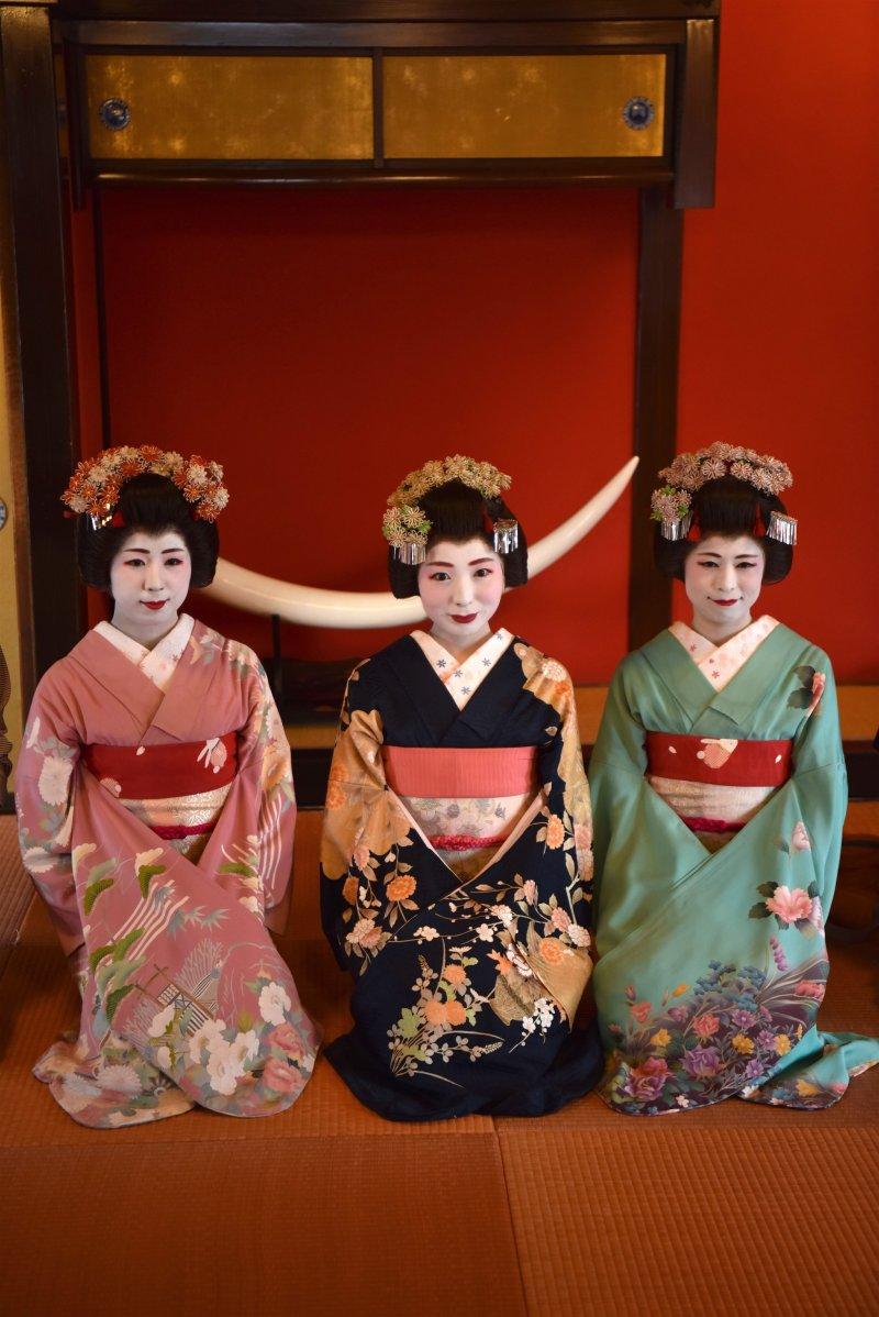 Die Maiko im Somaro Teehaus unterhalten sich nach der Aufführung mit den Gästen und posieren für ein Foto.