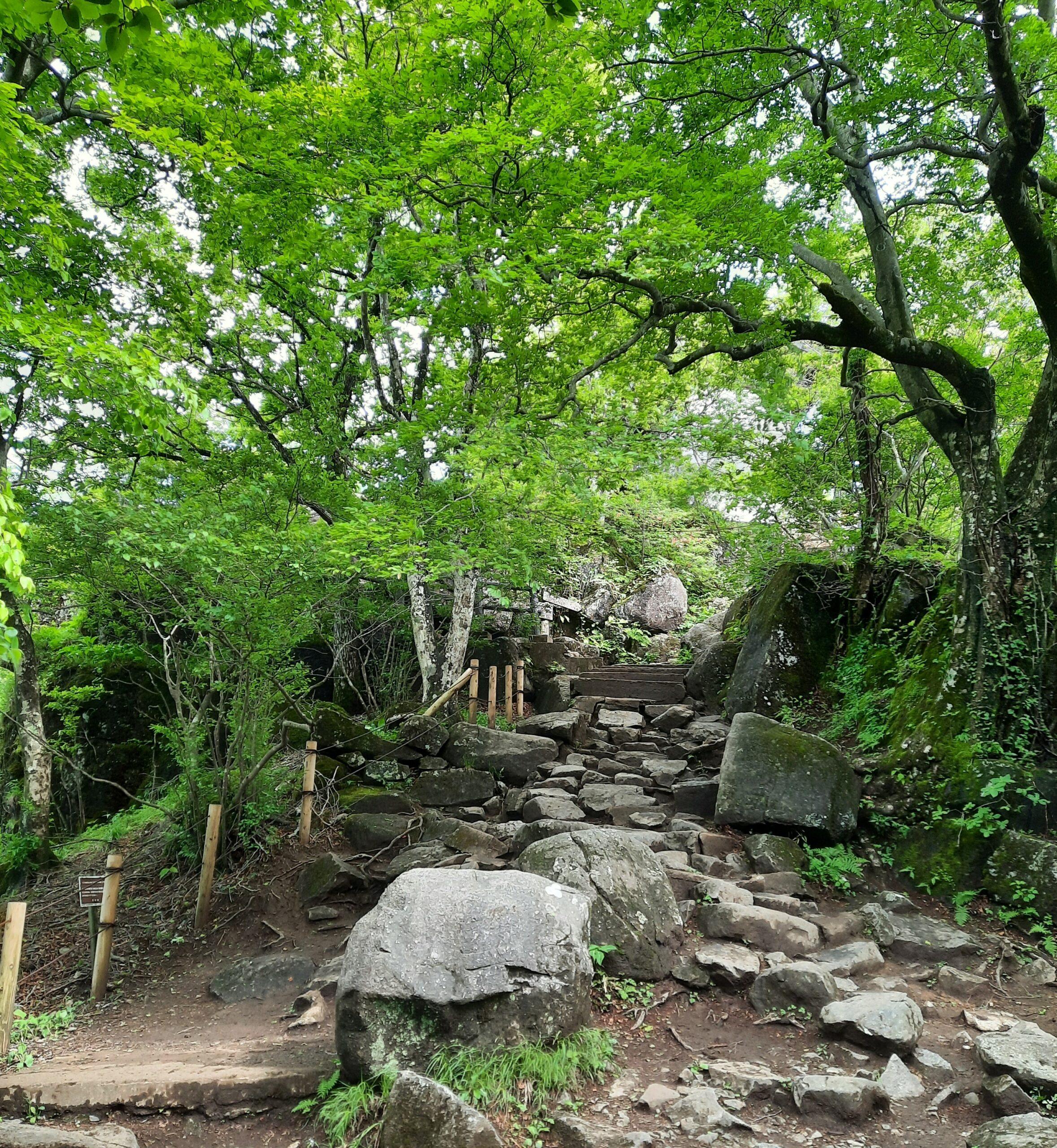 Wanderpfad auf dem Berg Tsukuba
