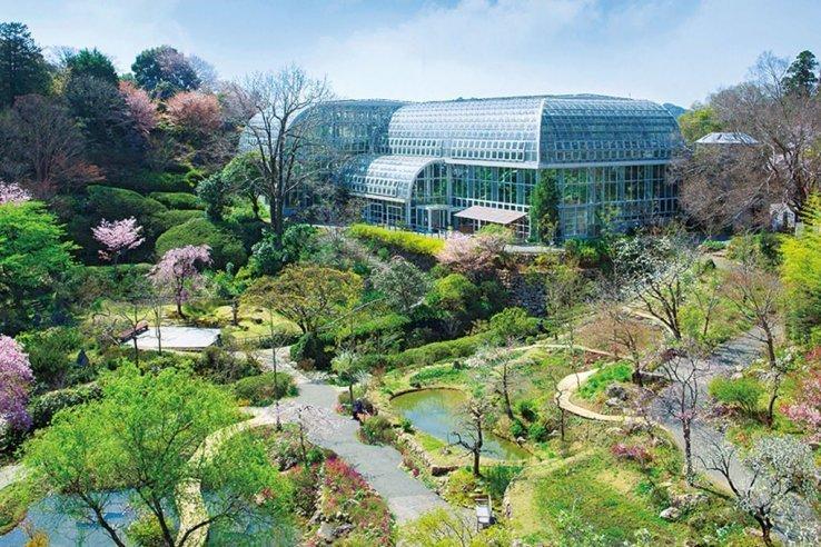 Der Botanische Garten in Makino.