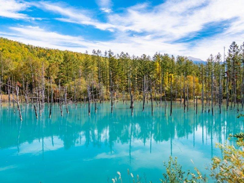 Der blaue Teich in Hokkaido.