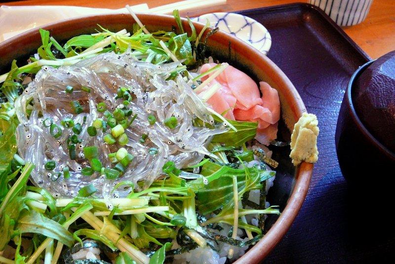 Shirasu-don - kleine Sardinen auf Reis - die Spezialität aus Kanagawa.