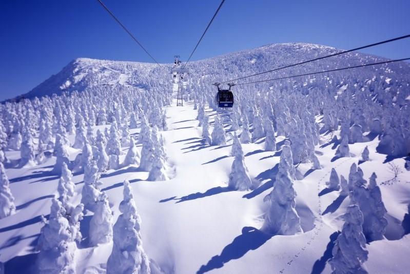 Zao Schneemonster