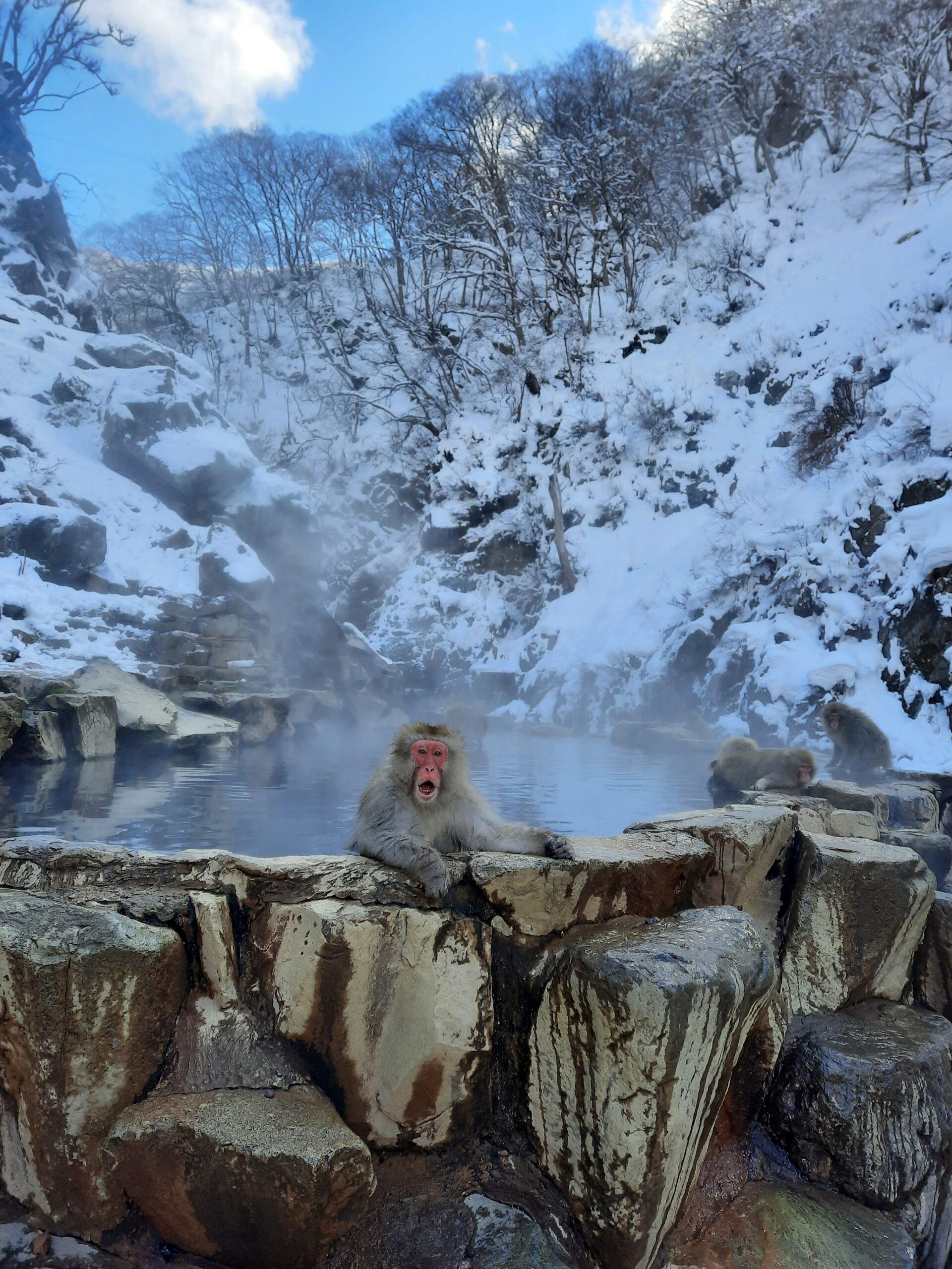 Bei den kalten Wintertemperaturen tut ein warmes Bad gut