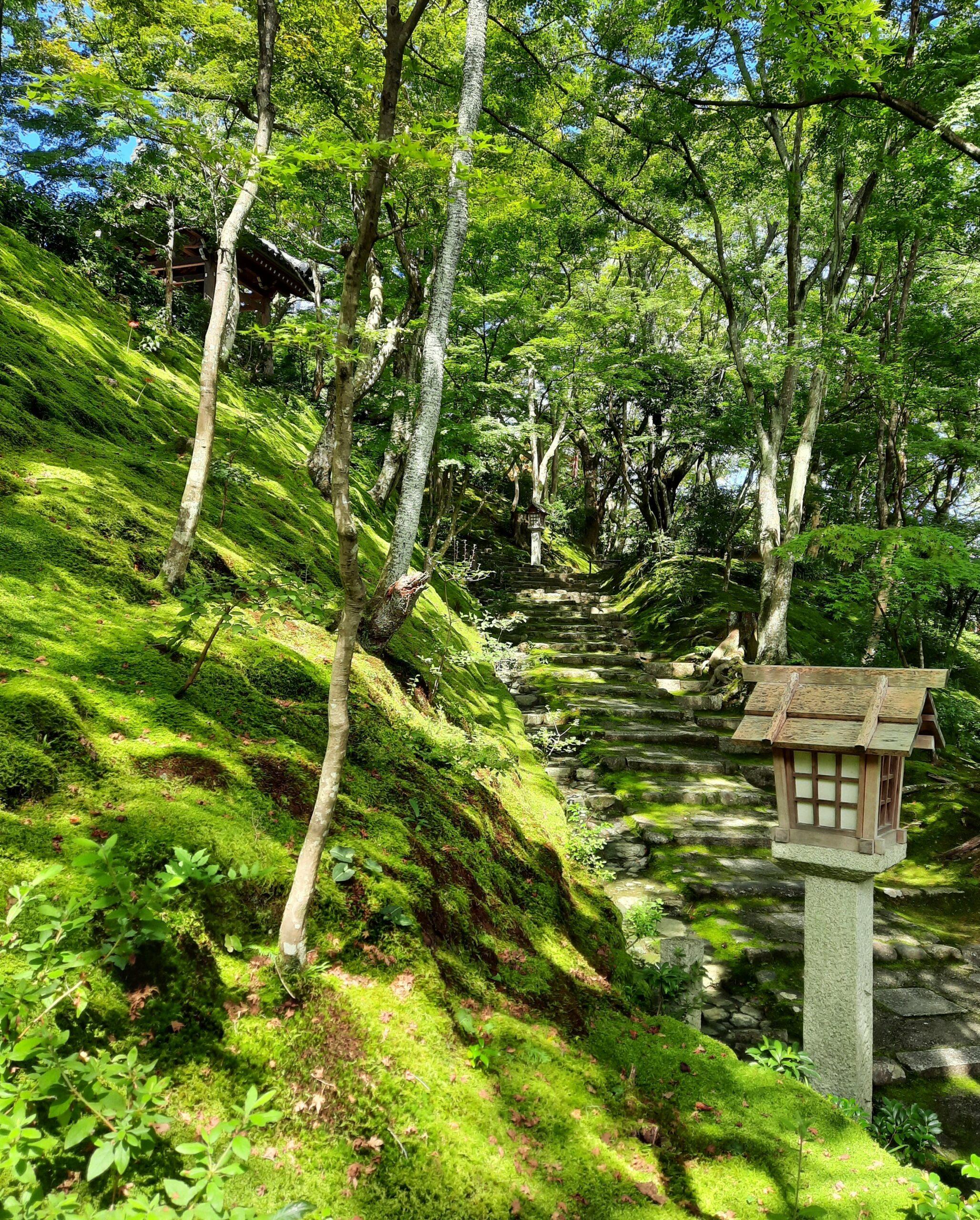 Natur Jojakkoji Tempel