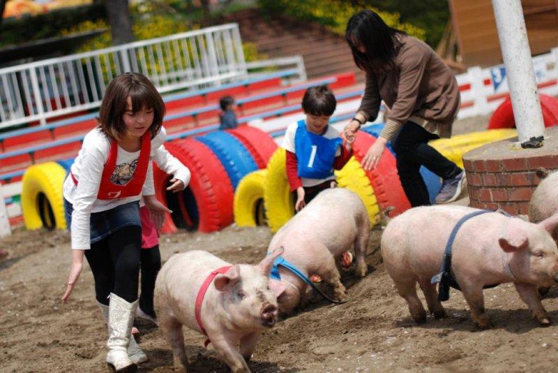 Begegnungen mit Tieren sind gerade für die Kinder spannend.