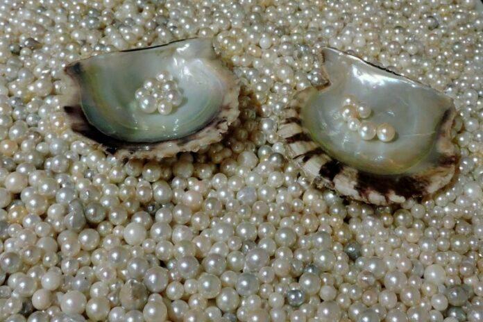 Mikimoto Perlen